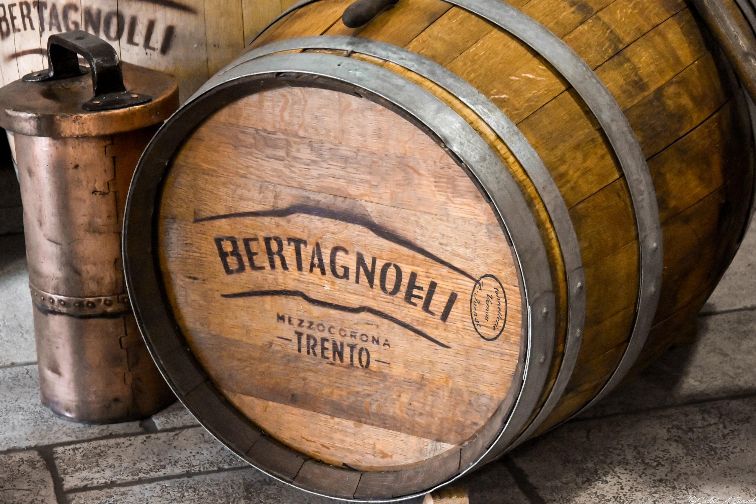 Barrique per l'invecchiamento della grappa, Distilleria Bertagnolli
