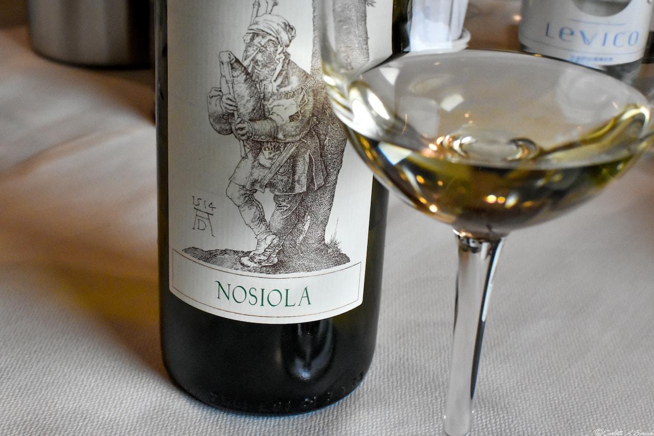 Nosiola, vitigno bianco autoctono incredibilmente aromatico, Ristorante La Cacciatora