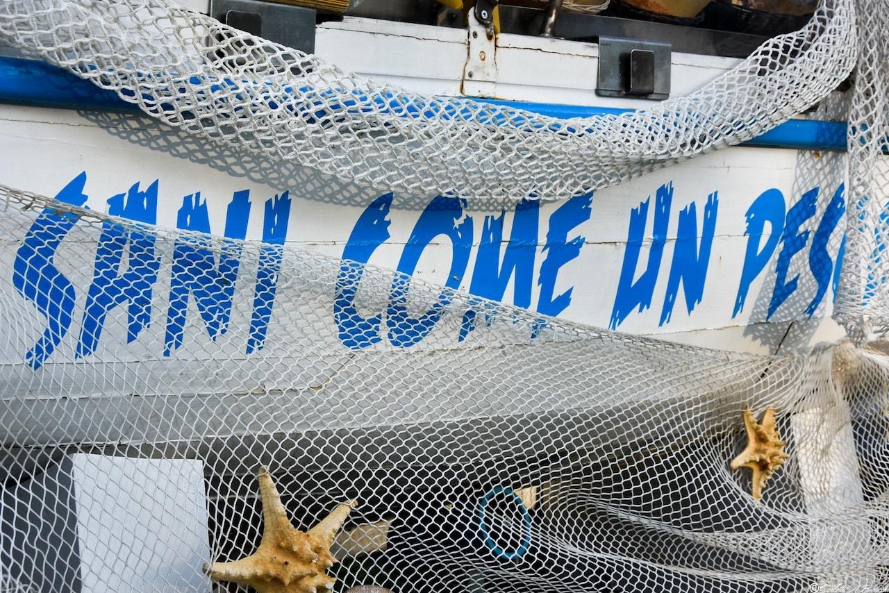 'Sani come un pesce', cartocci di pesce fritto freschissimo direttamente da San Benedetto del Tronto