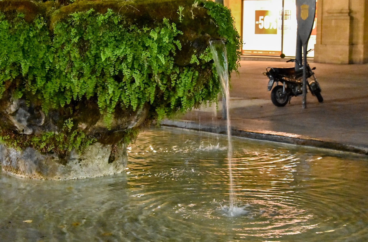 La Fontaine moussue di acqua calda in Cours Mirabeau