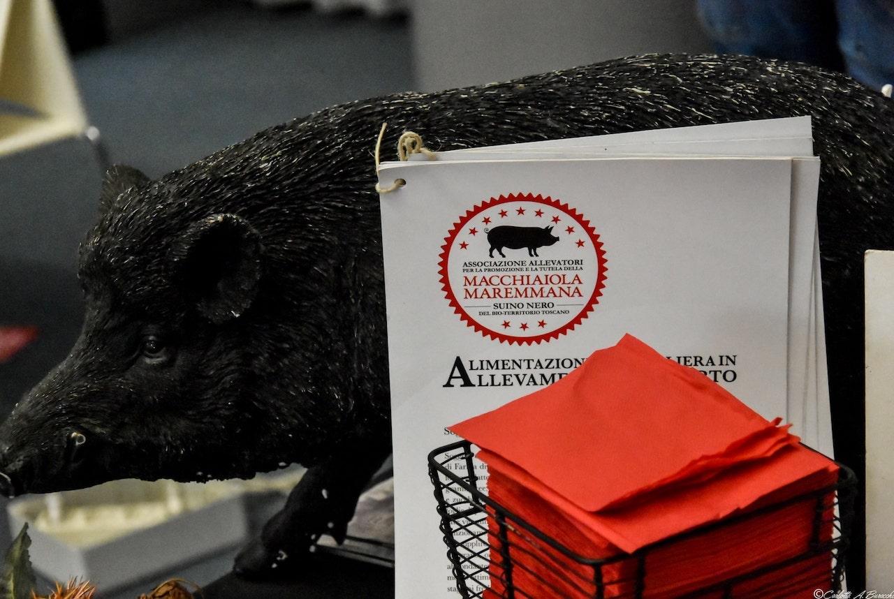 Il marchio del''associazione allevatori della razza suina nera Macchiaiola Maremmana nell'area degustazione