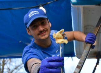 Il pesce fritto di San Benedetto del Tronto in giro per l'Italia sulla barca di 'Sani come un pesce'