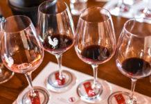 Degustazione dei vini dell'azienda Rocca di Montegrossi