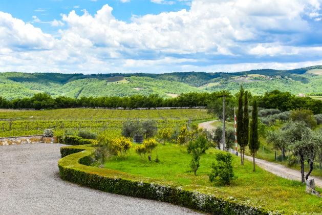 Panorama dalla terrazza della sala degustazione dell'azienda Rocca di Montegrossi