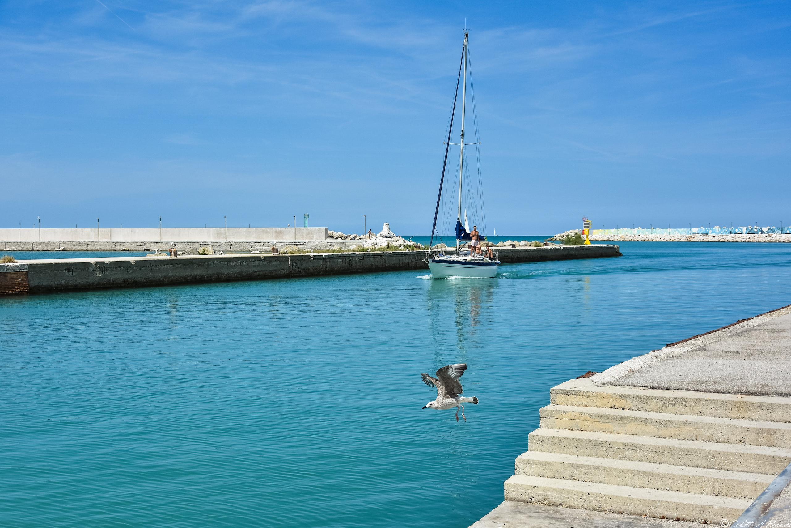 Le acque turchine del canale nel porto di Pesaro